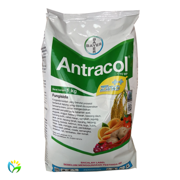 Antracol 70 WP - 1000 Gram